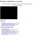 infobusinessuniversity.com